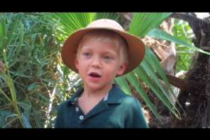This Little Boy Made A Video So He Can Meet Steven Spielberg