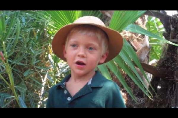 Jurassic Josh