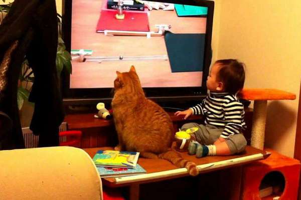 baby-and-a-cat-watching-tv