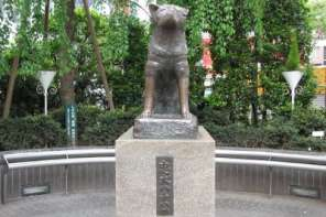 Hachiko: A Dog So Amazing They Made A Statue Of him