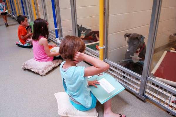 kids-read-shelter-dogs-human-society-of-missouri-2