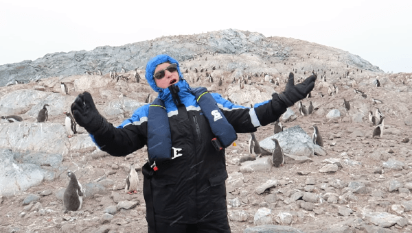 opera-penguins