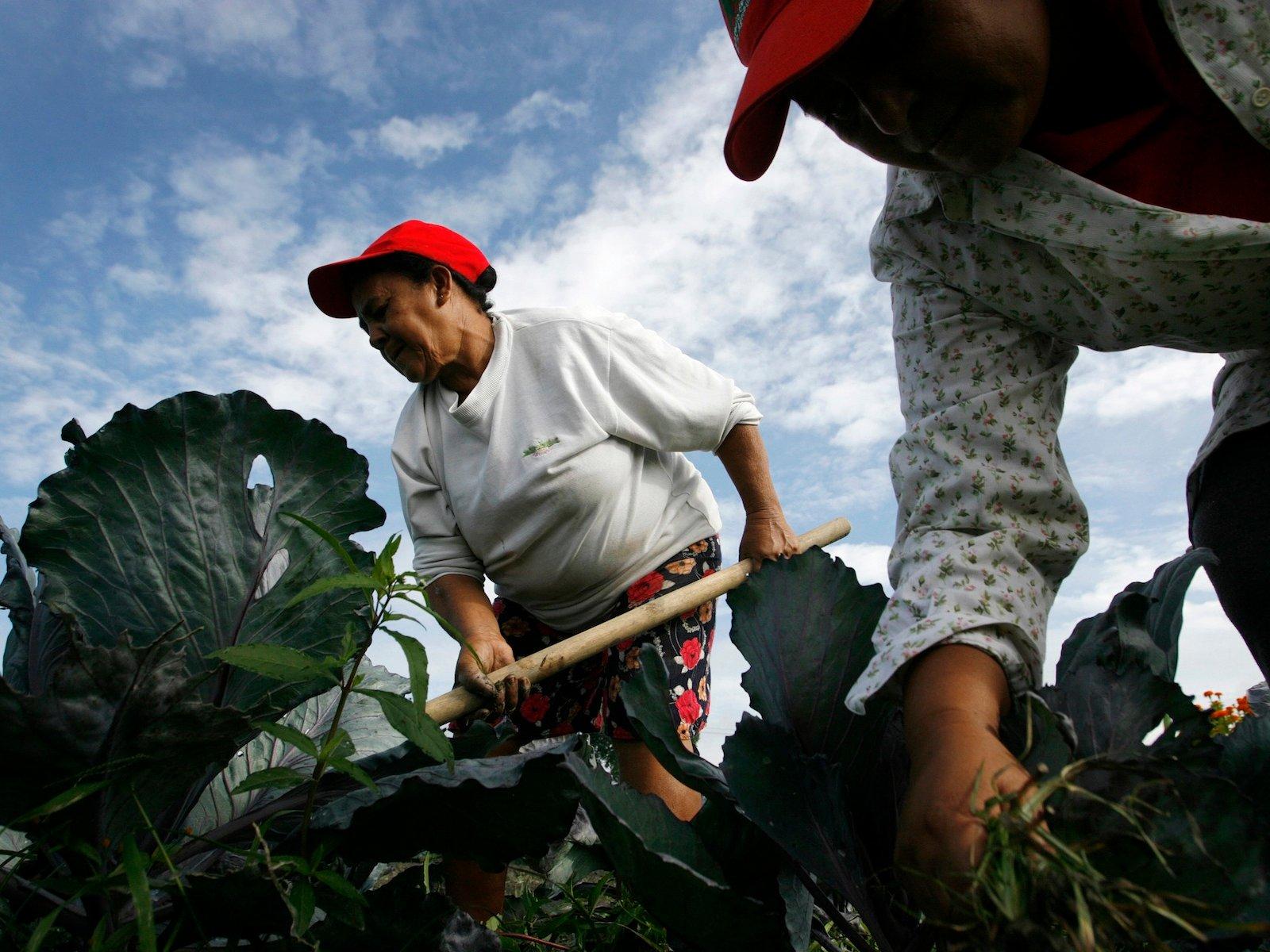 farm worker reuters