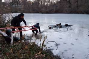 Samaritans Save Teens From Icy Pond In Central Park