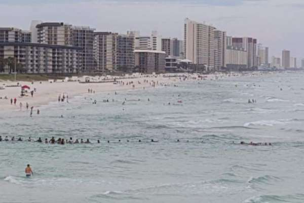 beach goers form human chain to save swimmers