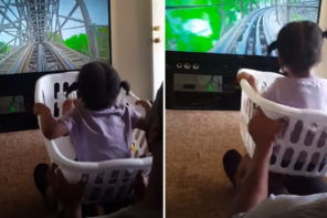 Dad Created Free Rollercoaster Out Of Laundry Basket