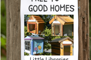 One Kid Decided To Start A Free Library In Her Neighborhood