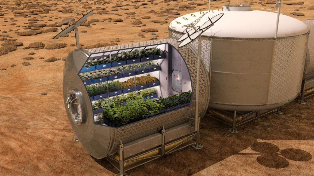 Scientists Are Learning To Grow Plants In Space