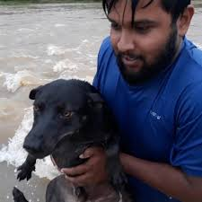 Samaritans Help Animals In Peril