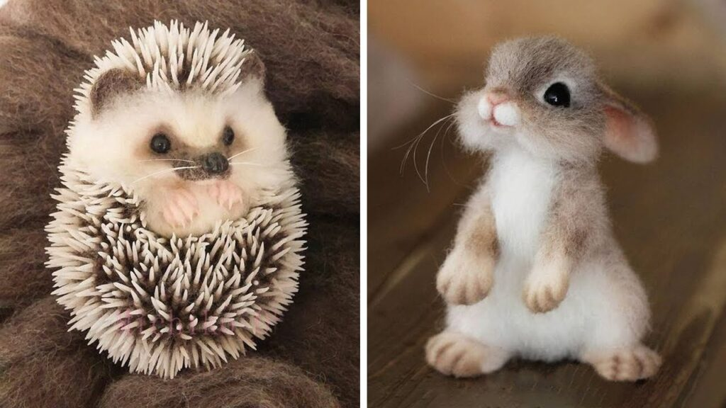 Cutest Baby Animals